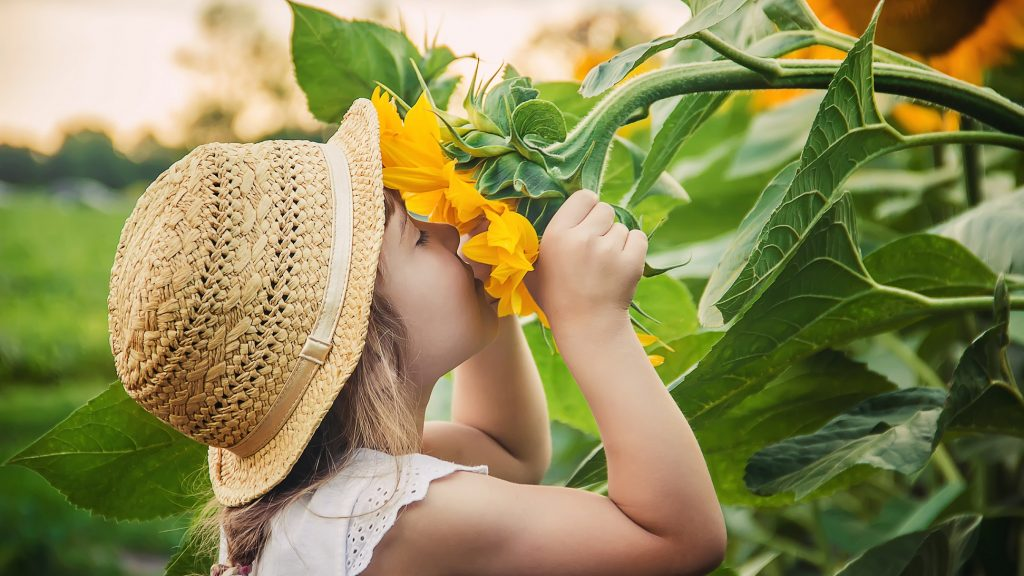january resolutions to smell the flowers